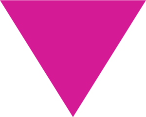 LGBTQ Freedom Fund Logo